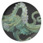 Green Octopus Melamine Plate