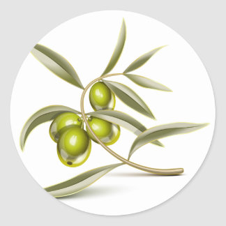 Green olives branch classic round sticker