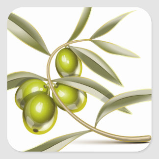 Green olives branch square sticker
