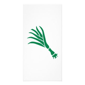 Green onion photo greeting card