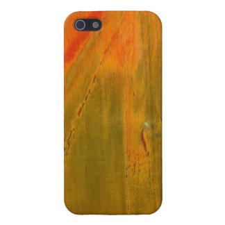 Green & Orange Stone iPhone 5 Glossy Finish Case