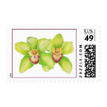 Green Orchid Stamp