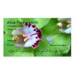 Green Orchids business cards