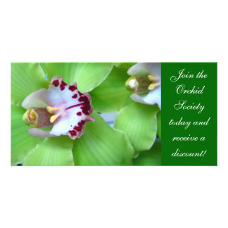 Green Orchids photo cards