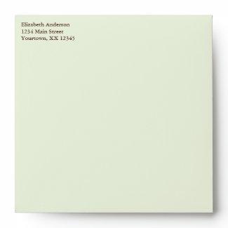 Green Owl Baby Shower Envelopes envelope