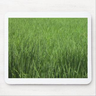 green padi's field mouse pad