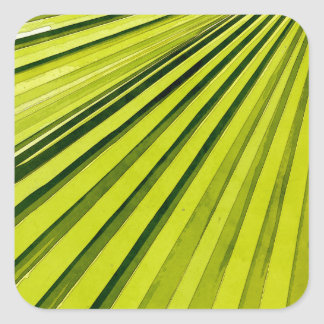 Green Palm Frond Square Sticker