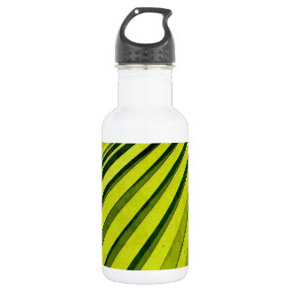 Green Palm Frond Water Bottle