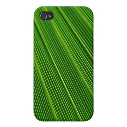 Green Palm Leaf iPhone 4 Case