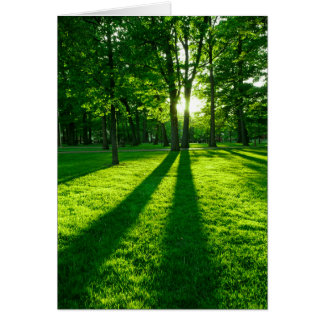 Green park greeting cards