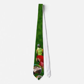 Green Parrot and Macaws Tie