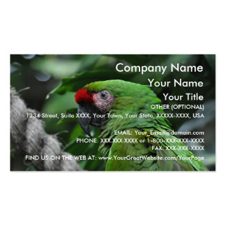 Green Parrot - business card template