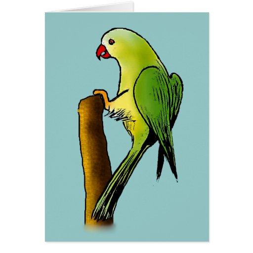 Green Parrot Card