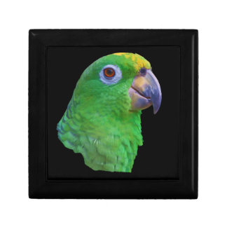 Green Parrot Customizable Gift Box