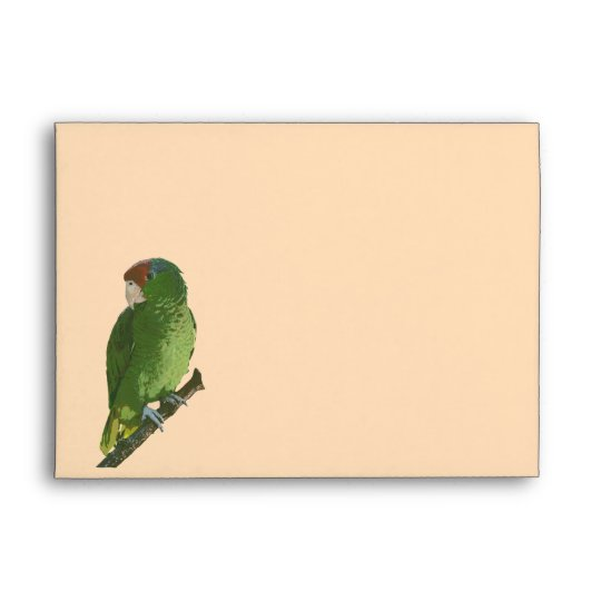 Green Parrot Envelope