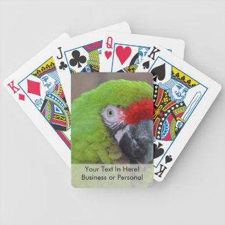green parrot head view  bird bicycle playing cards