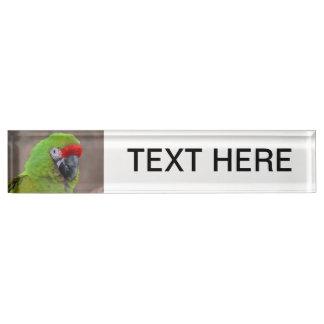 green parrot head view  bird desk name plates