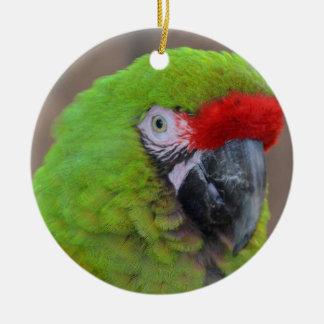 green parrot head view  bird ornament