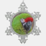green parrot head view  bird ornaments