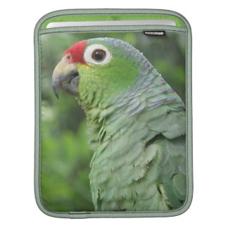 Green Parrot iPad Sleeve