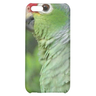 Green Parrot iPhone Case iPhone 5C Case