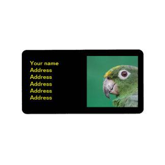 Green Parrot Label