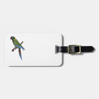 Green Parrot Macaw Painting Bag Tag