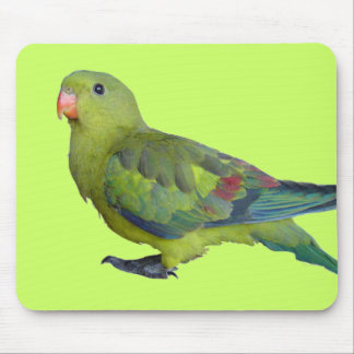 Green Parrot Mouse Pad