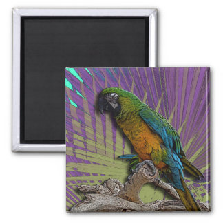 Green Parrot & Palms magnet