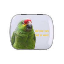 Green Parrot personalized Jelly Belly Tin