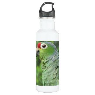 Green Parrot 24oz Water Bottle