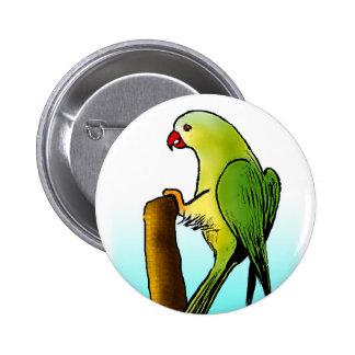 Green Parrot Pins