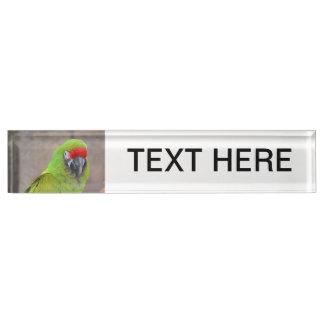 Green parrot red head bird image c desk nameplate