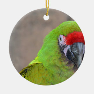 Green parrot red head bird image c christmas ornaments