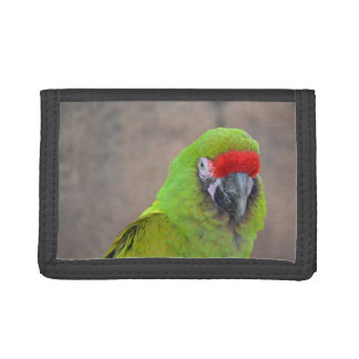 Green parrot red head bird image c tri-fold wallet