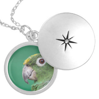 Green Parrot Silver Plated Necklace