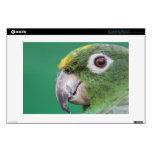 Green Parrot Skins For Laptops
