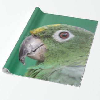 Green Parrot Gift Wrap