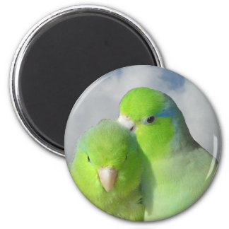 Green parrotlet pair magnets