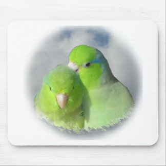 Green parrotlet pair mouse pad