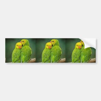 Green Parrots Love Birds Photography Bumper Sticker