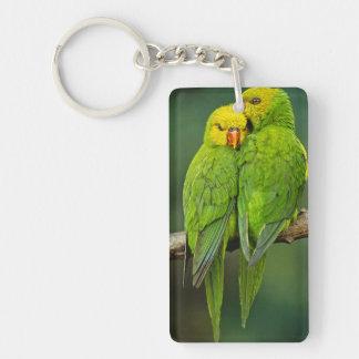 Green Parrots Love Birds Photography Keychain