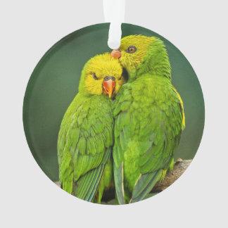 Green Parrots Love Birds Photography Ornament