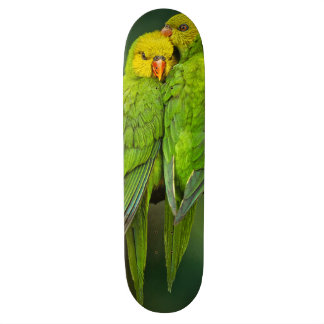 Green Parrots Love Birds Photography Skate Board Deck