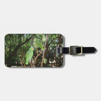 Green Parrots Luggage Tag
