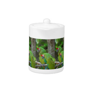 Green Parrots Teapot