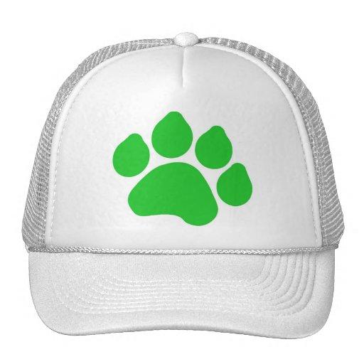 Green Paw Print Hat