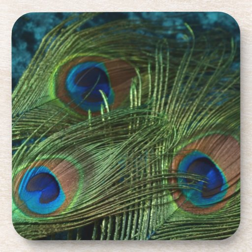 Green Peacock Feather Beverage Coasters