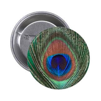 Green Peacock Feather Button