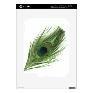 Green Peacock Feather Decals For iPad 3